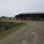 Extension Hangar Agricole - Senonnes (1)